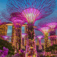 Agence événementielle toulouse congrès singapour