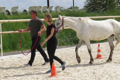Agence événementielle toulouse equitation