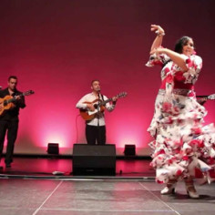 Animation Gipsy Flamenco Toulouse