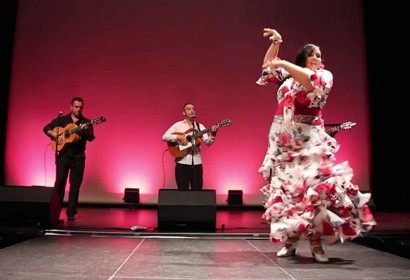 Animation Gipsy Flamenco Toulouse