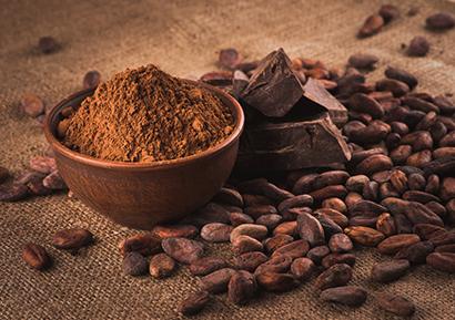 degustation en entreprise chocolat