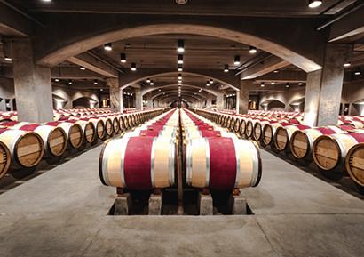 Dégustation de vins Bordeaux
