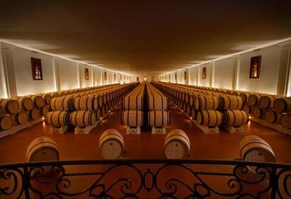 Journée dégustation vin bordeaux oenologie
