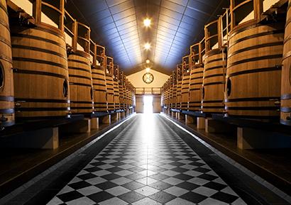 Journée dégustation vin bordeaux pape clément