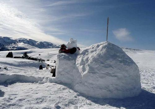 Journée neige entreprise construction igloo