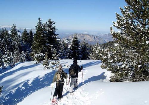 Journée neige entreprise randonée en raquette