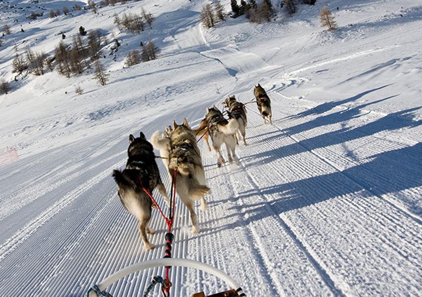 Journée multi-activités en Andorre traineau