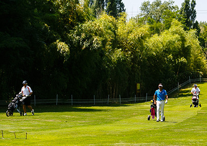 Organisation compétition golf amicale entreprise
