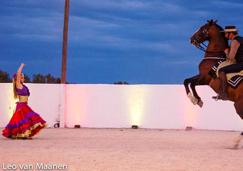 Séminaire en Camargue spa soirée flamenco