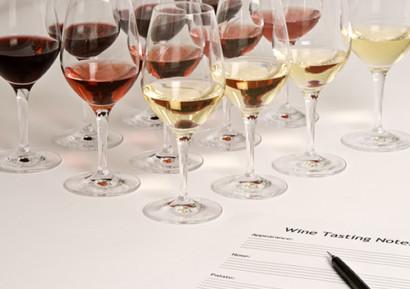 seminaire aude vin