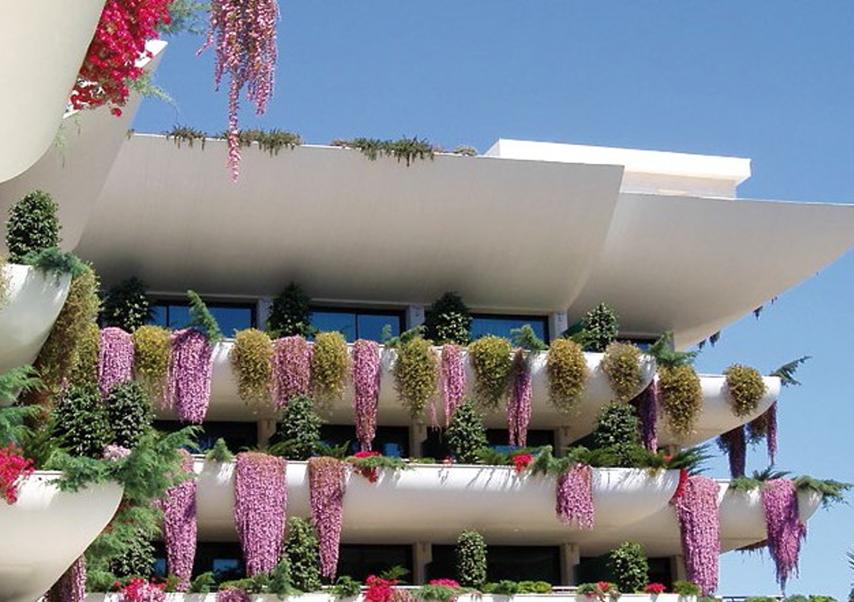 Séminaire Costa Blanca fleurs