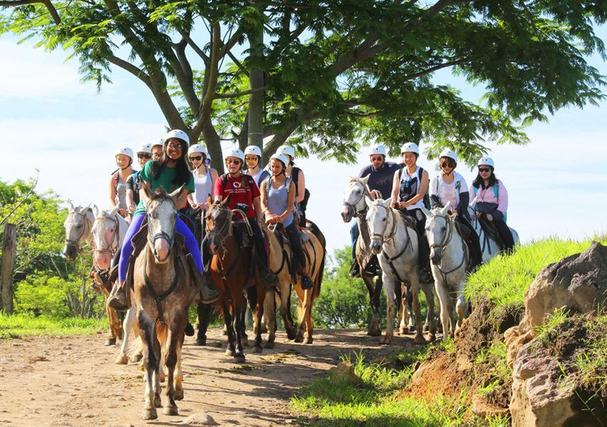 Séminaire Costa Rica cheval