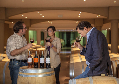 Stage de pilotage entreprise puis dégustations de vins
