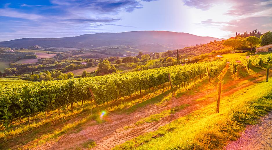 Team building Aquitaine et vins