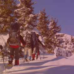 Team building Saint-Lary avec activités neige