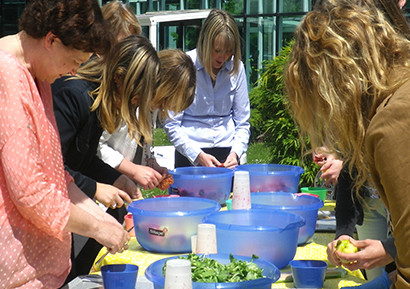 Team building anti-gaspillage alimentaire 3