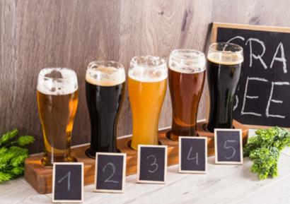 Team building création vin bière