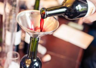 Team-building création vin gout