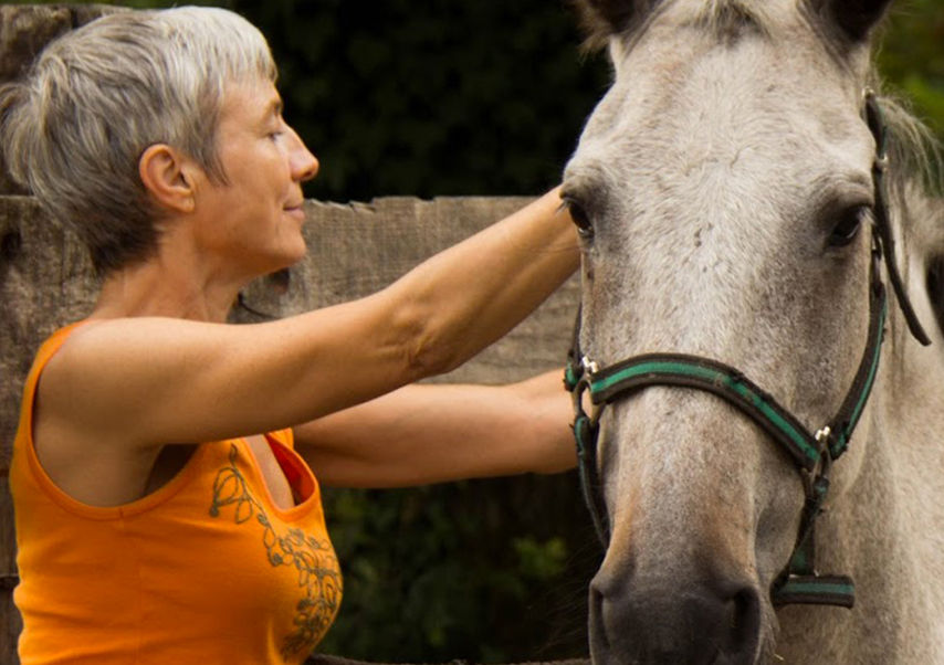 Team building equitation organisation