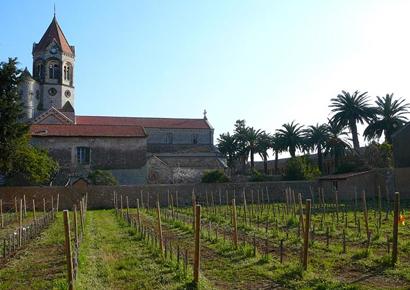 Team building régate en voilier et degustation de vins