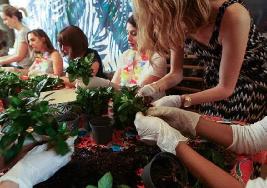 Team building vegetal fresque