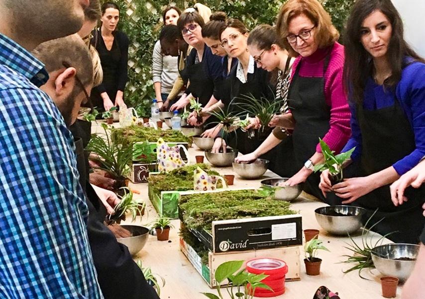 Team building vegetal kokedama