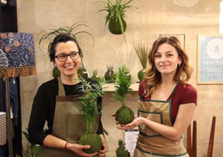 Team building vegetal plantes