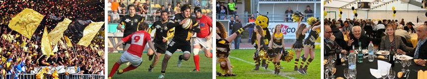 Testé et Approuvé par nos Clients Packages VIP Rugby