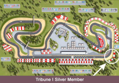 Trubine I Silver Member