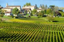 Visite de vignobles à Bordeaux