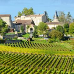Visite de vignobles puis soirée Cabaret à Bordeaux