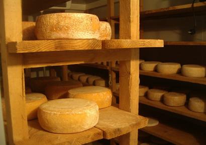 Visite d'une fromagerie des Pyrénées