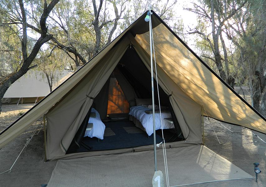 Voyage entreprise Namibie tente