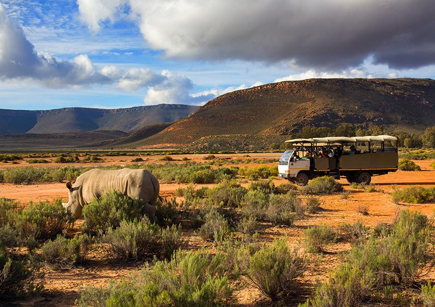 Voyage entreprise afrique du sud 4x4