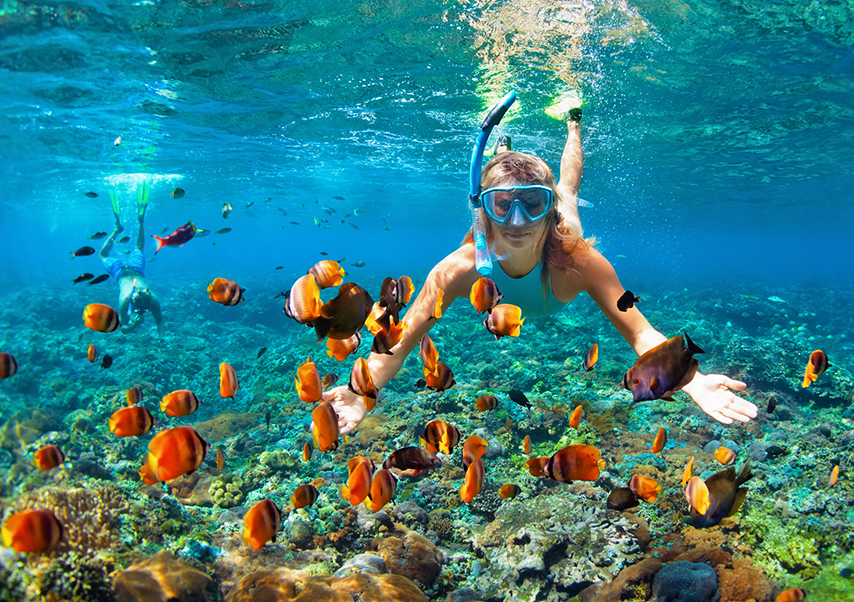Voyage incentive Thaïlande plongee
