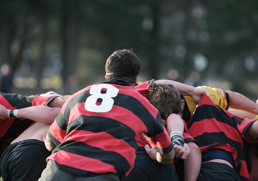 activités pays basque entreprise rugby