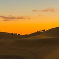 agence événementielle toulouse-voyage entreprise desert maroc