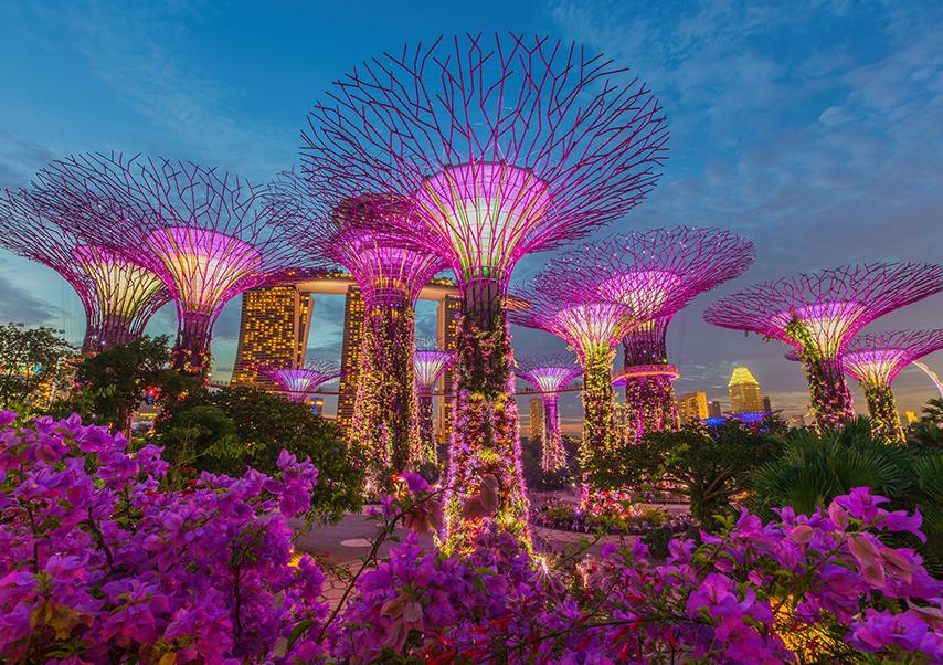 congrès singapour jardin