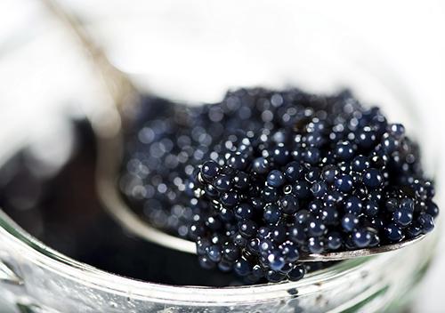 Séminaire Dordogne caviar