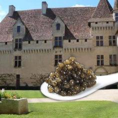 Séminaire Dordogne