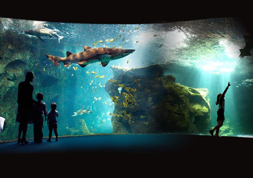 séminaire la rochelle aquarium