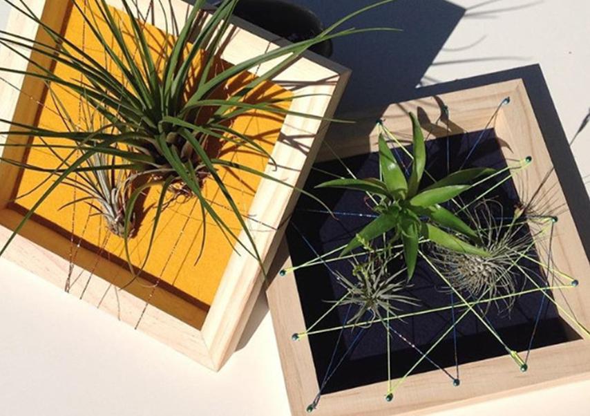 team building création objet plantes