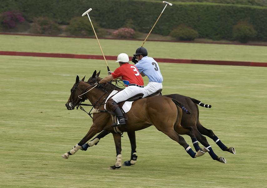 voyage entreprise argentine polo