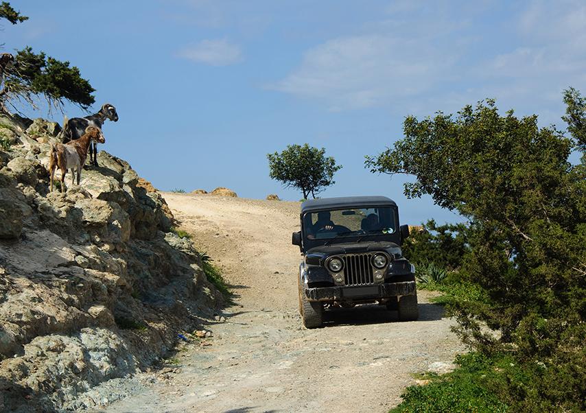 voyage entreprise chypre rallye